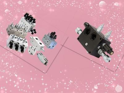 Custom non standard hydraulic valve block