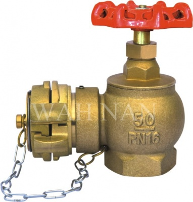 WH050 BSP Pin Fire Hydrant