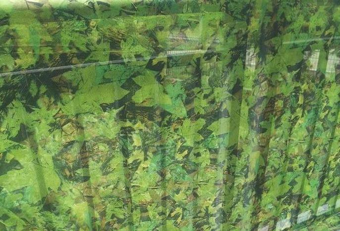 woodland stealth camo net