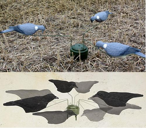 Pigeon CROWS Decoys Triple play