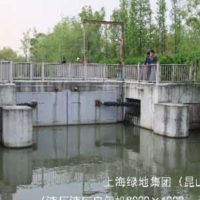 多種形式鋼制閘門