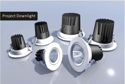 Project & Cylinder Down Light (CH)