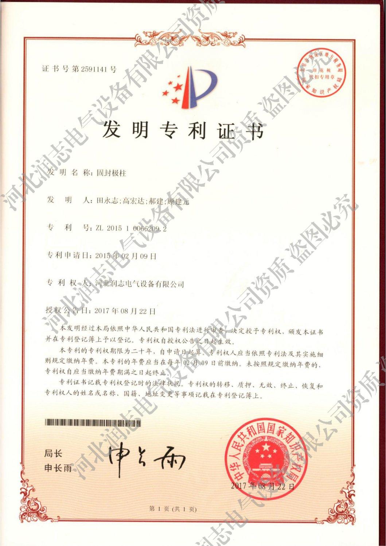 發明創造專利證書(固封極柱)