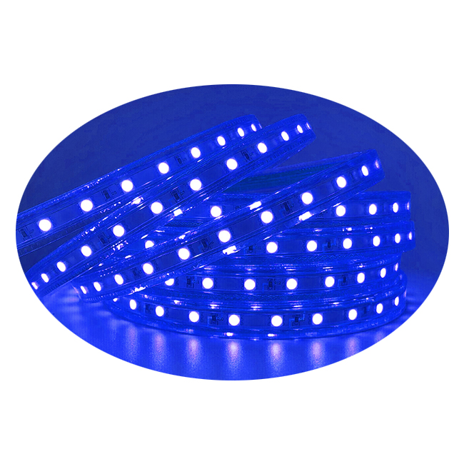 300leds,2835,Super Bright , Blue, Dimmable, 110-120V  Flat LED Strip Rope Light, Indoor/Outdoor