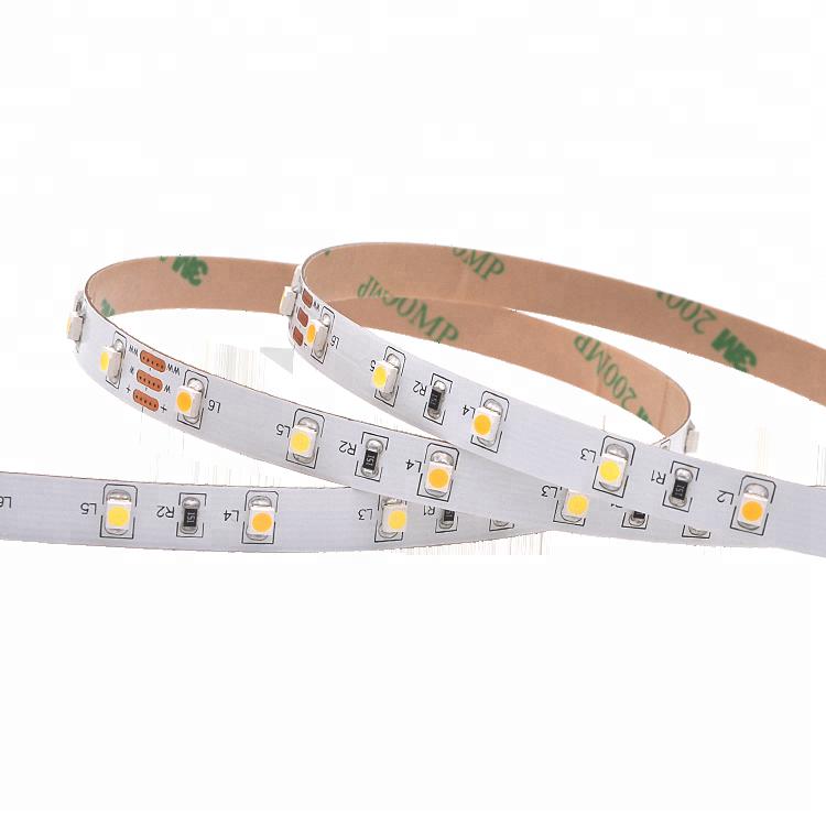 CCT Adjustable 60Leds/M 3528 Led strip light