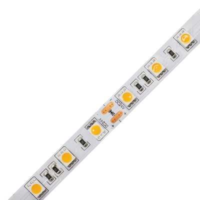 High CRI 10mm 60Leds/M 5050 Led Strip Light