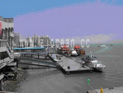 湖南某趸船码头