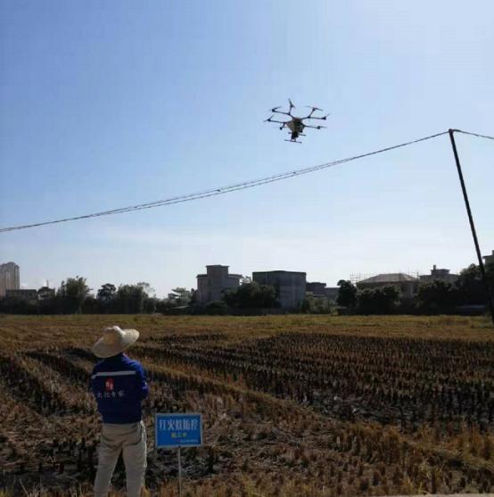 無人機紅火蟻防控項目