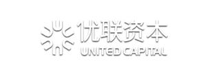 北京东方优联投资顾问有限公司